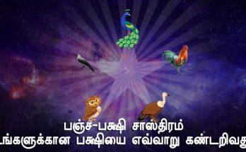 PanchaPakshi Shastram - Tamil Astrology Blog