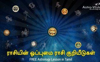 ராசியின் ஒப்புமை - FREE Astrology Lessons